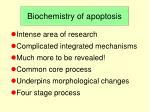biochemistry of apoptosis
