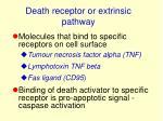 death receptor or extrinsic pathway