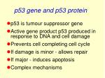 p53 gene and p53 protein
