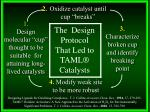 the design protocol that led to taml catalysts