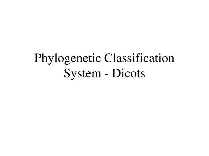 phylogenetic classification system dicots n.