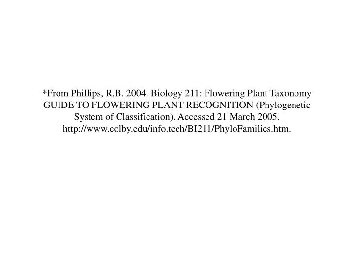 *From Phillips, R.B. 2004. Biology 211: Flowering Plant Taxonomy