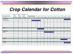 crop calendar for cotton