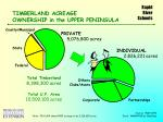 timberland acreage ownership in the upper peninsula