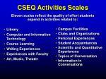 cseq activities scales