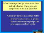 what assumptions guide researchers in their studies of groups and the processes within groups