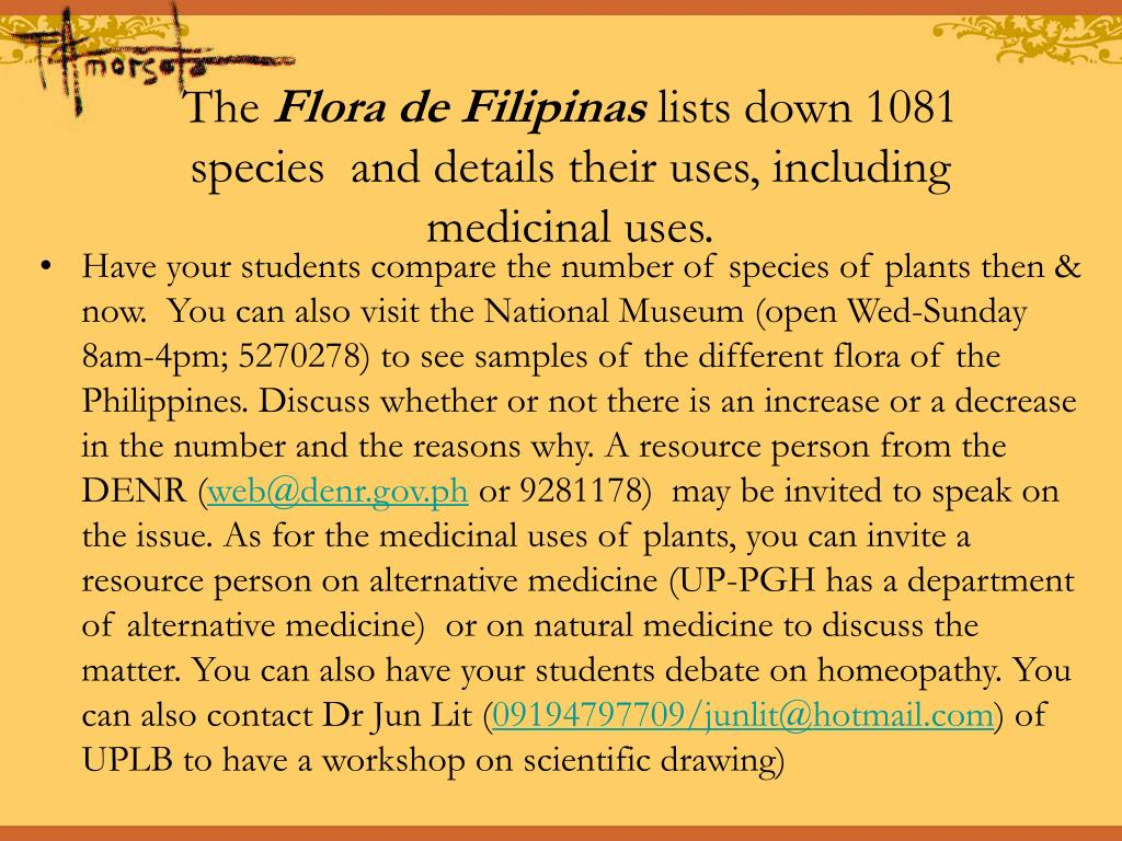 Have your students compare the number of species of plants then & now.  You can also visit the National Museum (open Wed-Sunday 8am-4pm; 5270278) to see samples of the different flora of the Philippines. Discuss whether or not there is an increase or a decrease in the number and the reasons why. A resource person from the DENR (