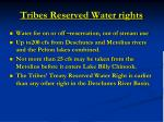 tribes reserved water rights16