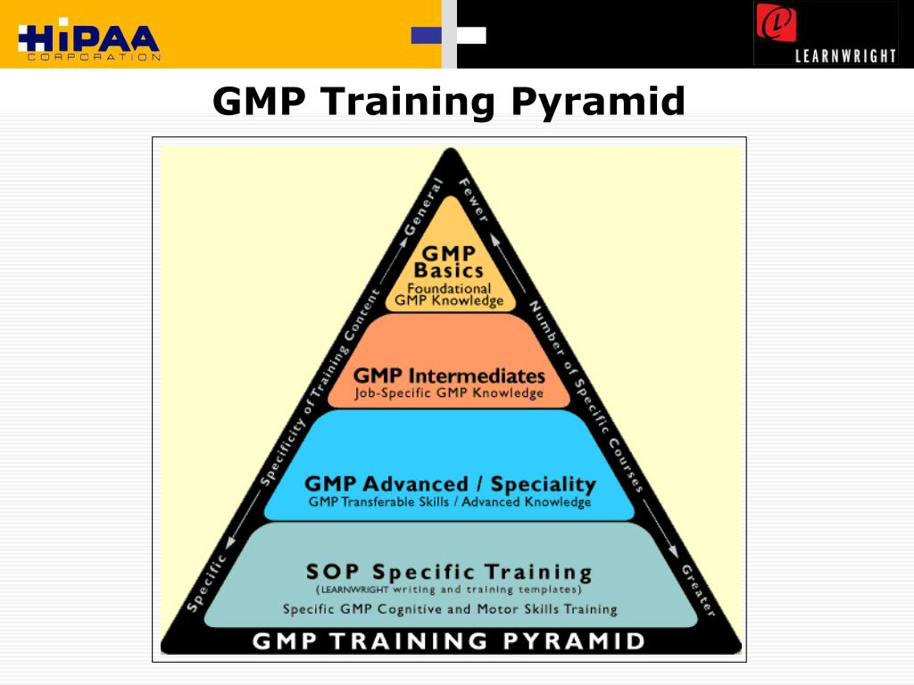 GMP Training Pyramid