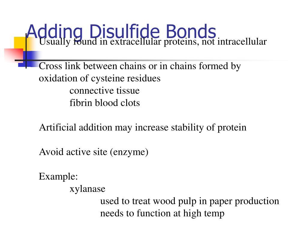 Adding Disulfide Bonds