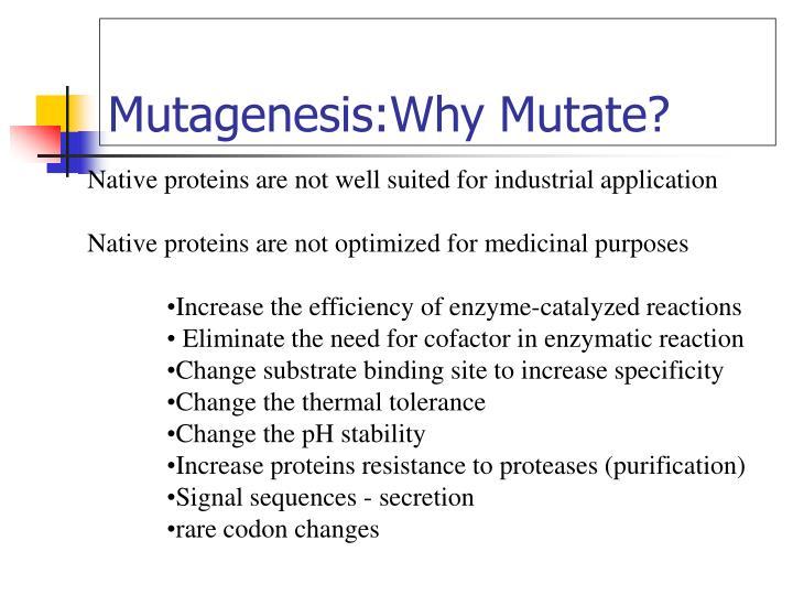 Mutagenesis why mutate