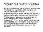 negative and positive regulation
