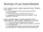summary of lac control mutants
