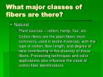 what major classes of fibers are there6