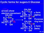 cyclic forms for sugars 5 glucose