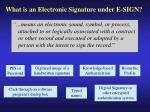 what is an electronic signature under e sign