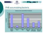 phb accumulating bacteria28