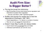 audit firm size is bigger better