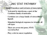 jak stat pathway8