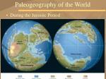 paleogeography of the world17