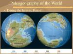 paleogeography of the world24