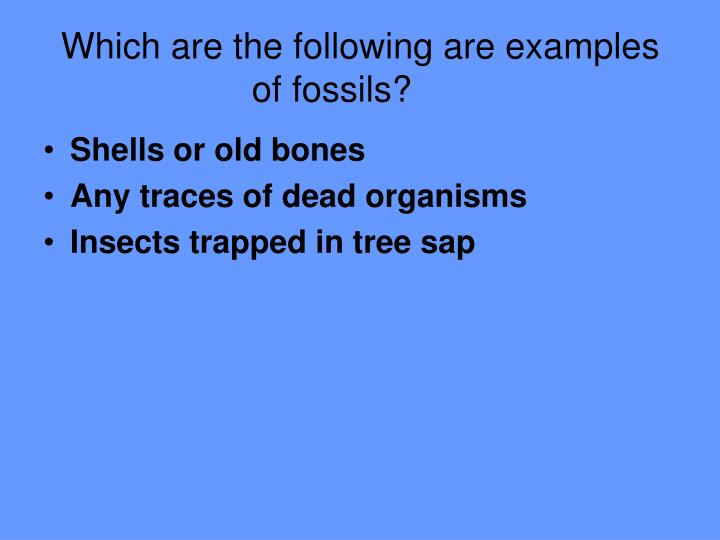which are the following are examples of fossils n.