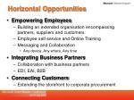 horizontal opportunities