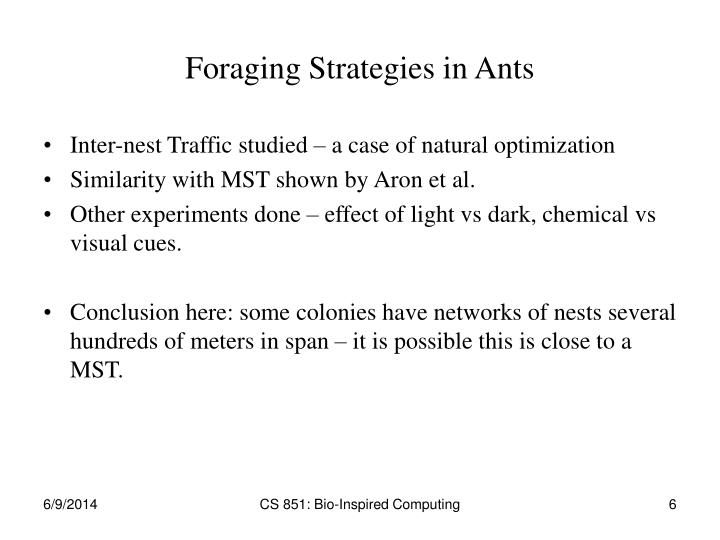Foraging Strategies in Ants