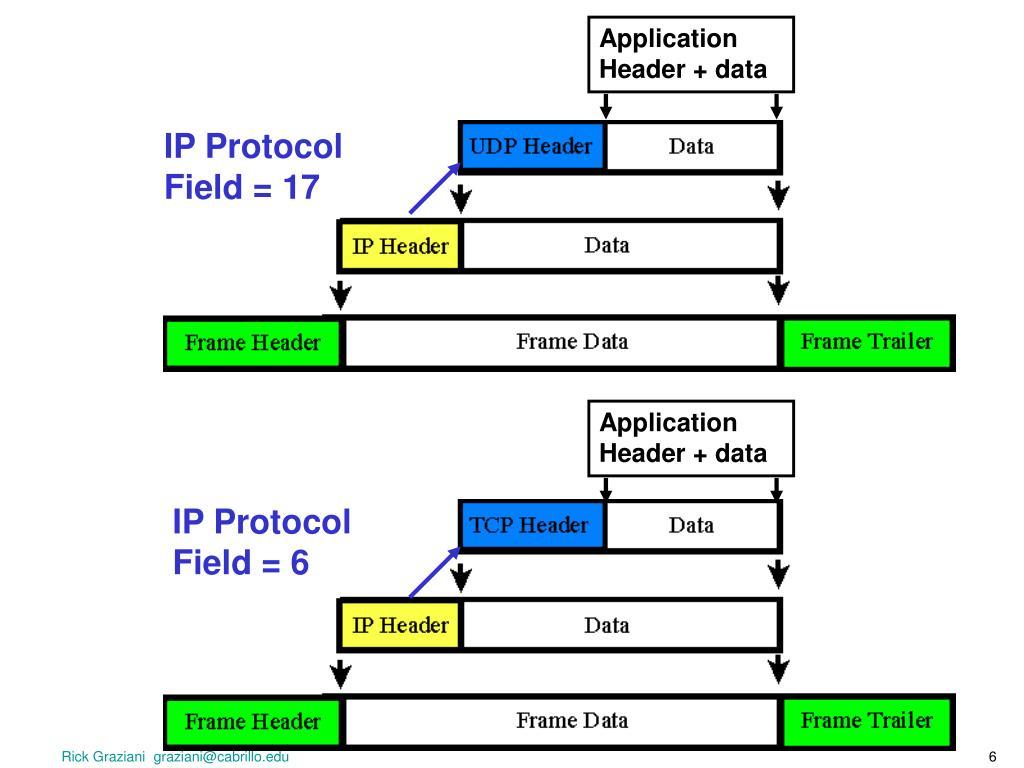 Application Header + data