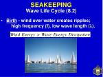 seakeeping10