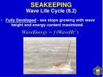 seakeeping12