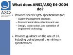 what does ansi asq e4 2004 do