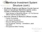 workforce investment system structure cont6