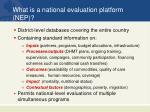 what is a national evaluation platform nep