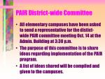 pair district wide committee