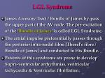 lgl syndrome