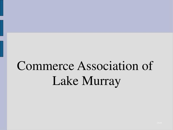 commerce association of lake murray n.