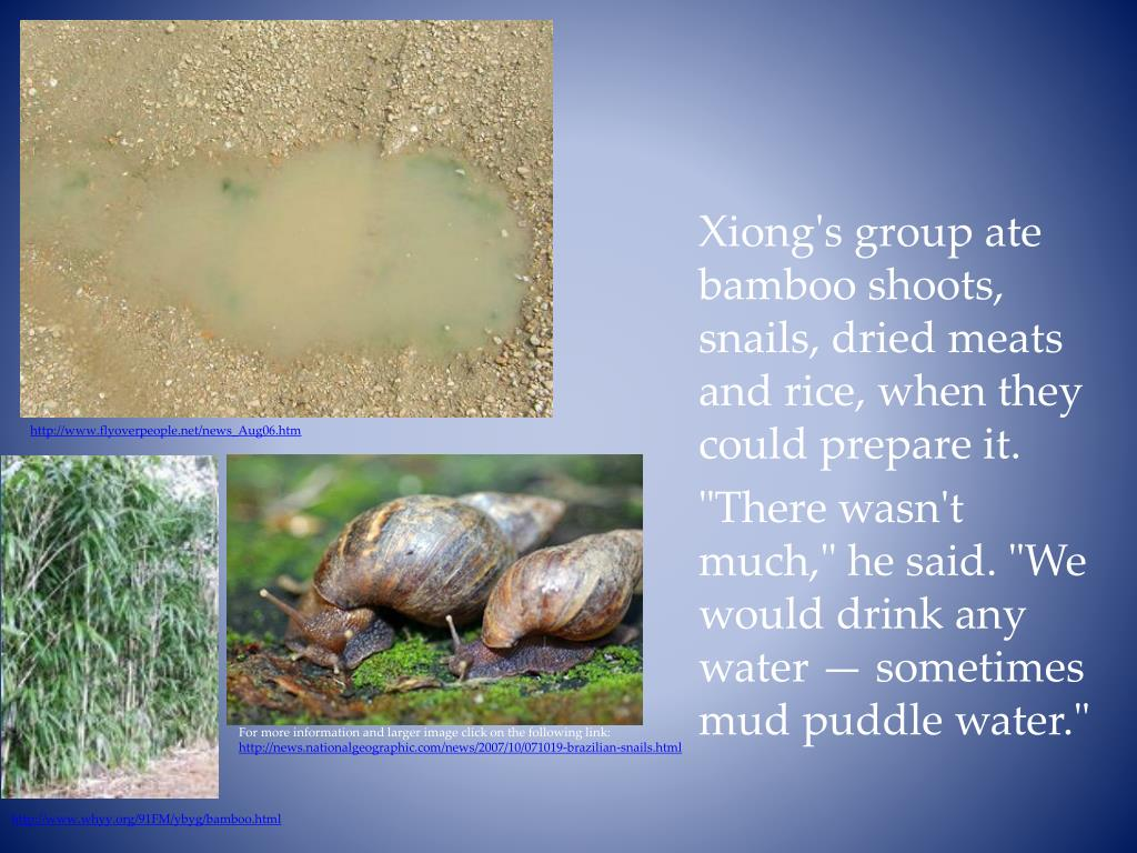 Xiong's group ate bamboo shoots, snails, dried meats and rice, when they could prepare it.