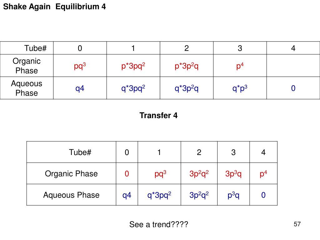 Shake Again Equilibrium 4