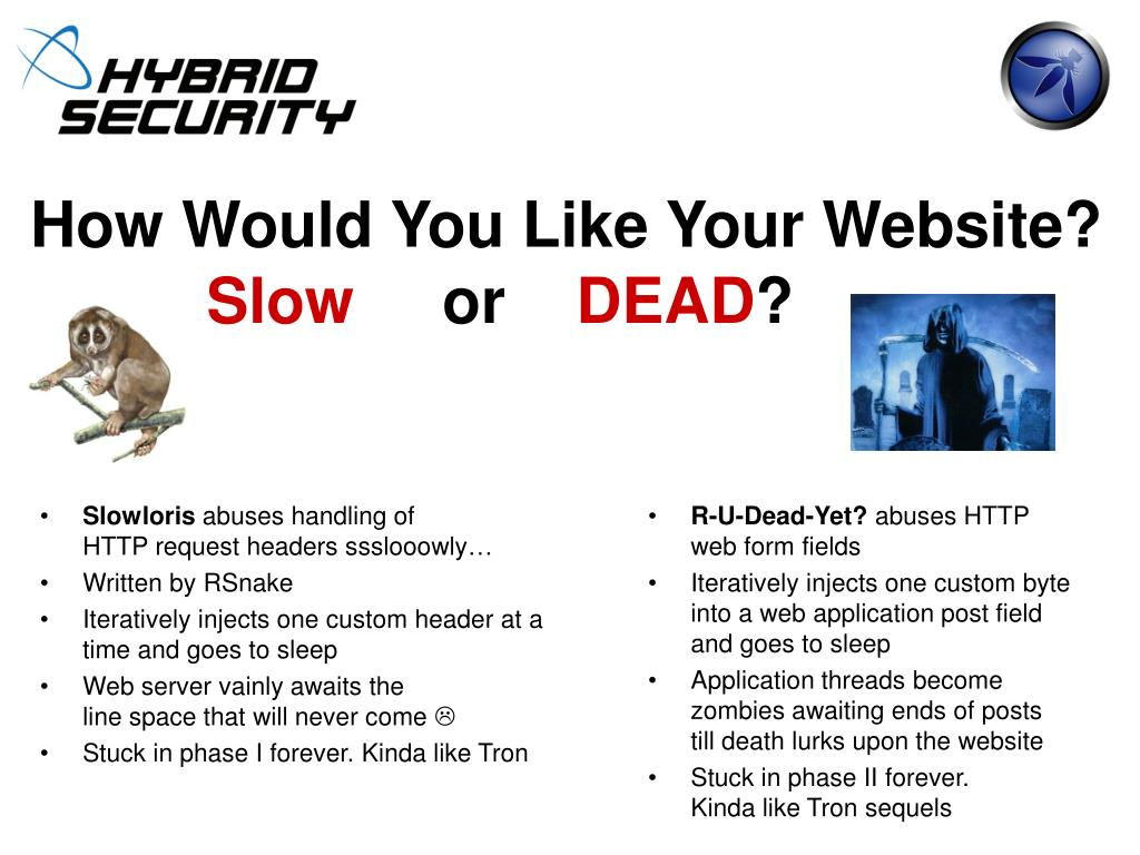 How Would You Like Your Website?
