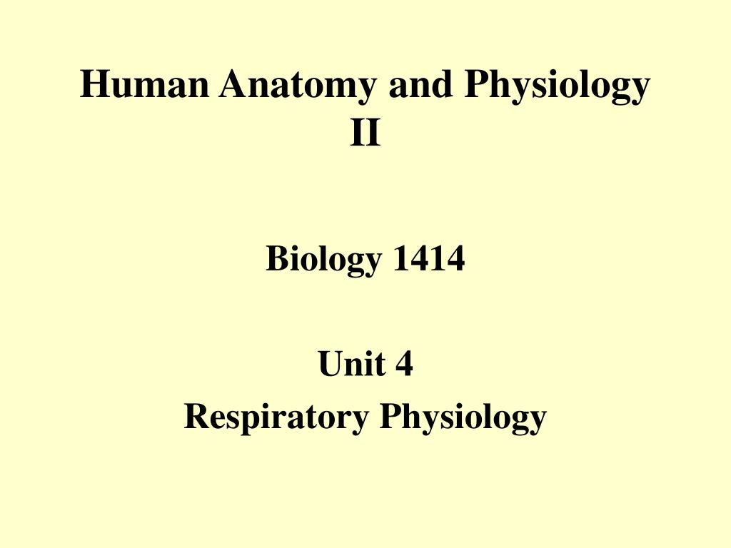 human anatomy and physiology ii l.