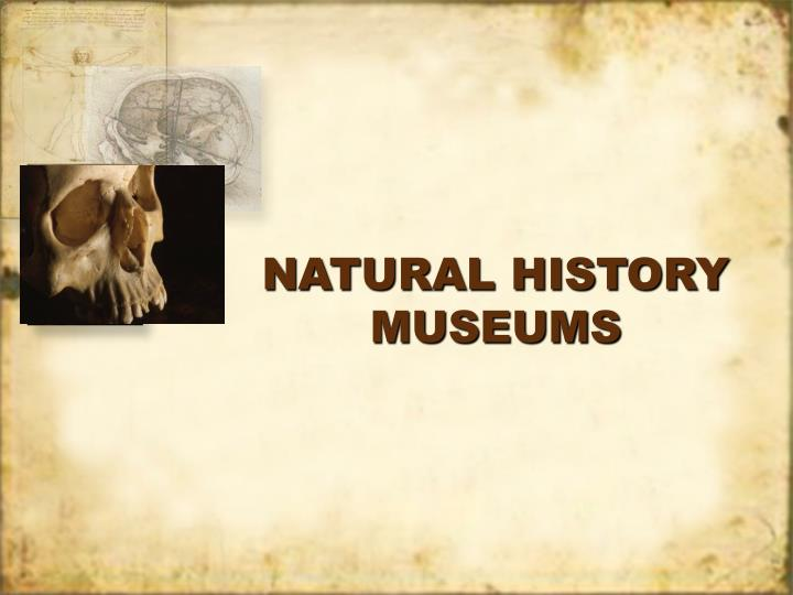 natural history museums n.