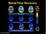 blood flow recovery