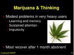 marijuana thinking