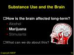 substance use and the brain12