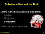 substance use and the brain15