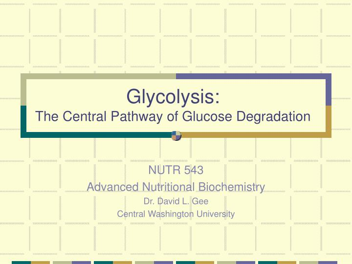 glycolysis the central pathway of glucose degradation n.