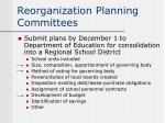 reorganization planning committees