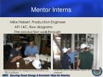 mentor interns
