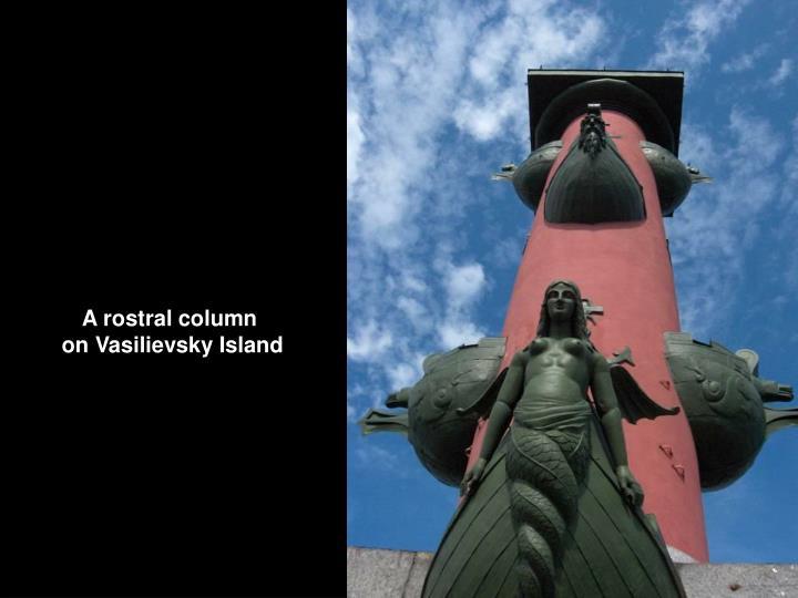 A rostral column